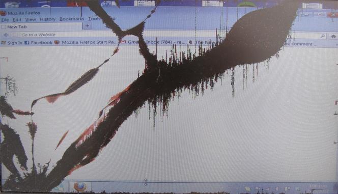 netbook screen, April 2012