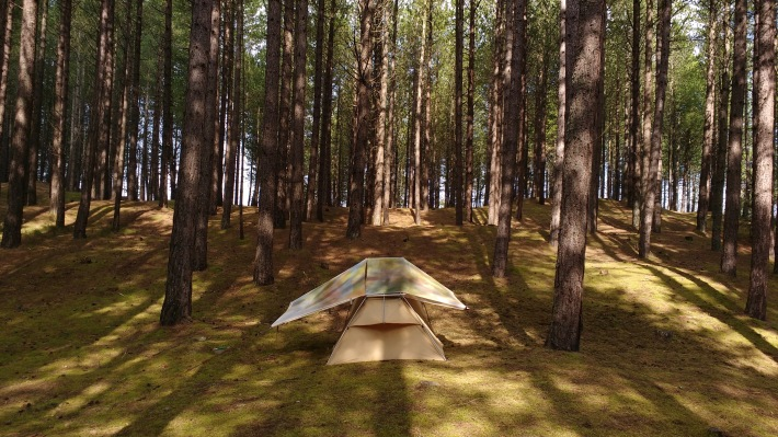 Camping_Painting_Roseisle_Dunes